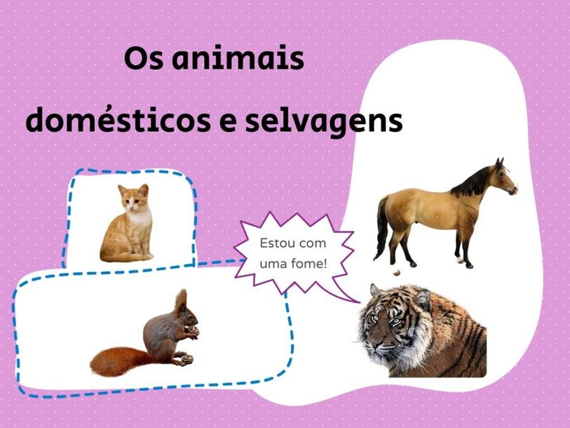 Animais domésticos e selvagens. by METODOLOGIAS ATIVAS2021