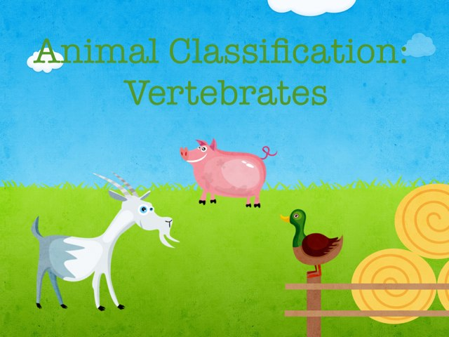 Animal Classification: Vertebrates by Tia Lindlauf