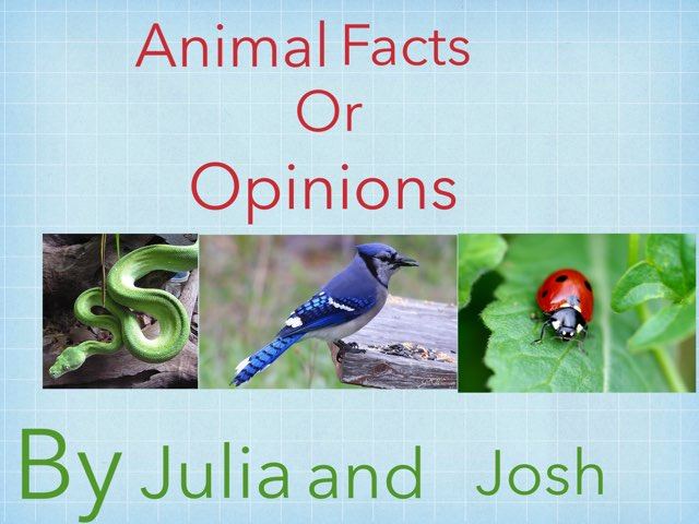 Animal Facts Or Opinions by Jennifer Alexander