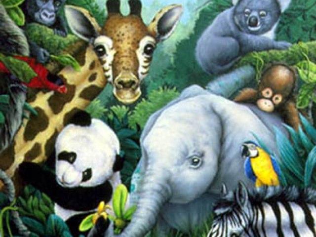 Animal Friends by Monica Silva