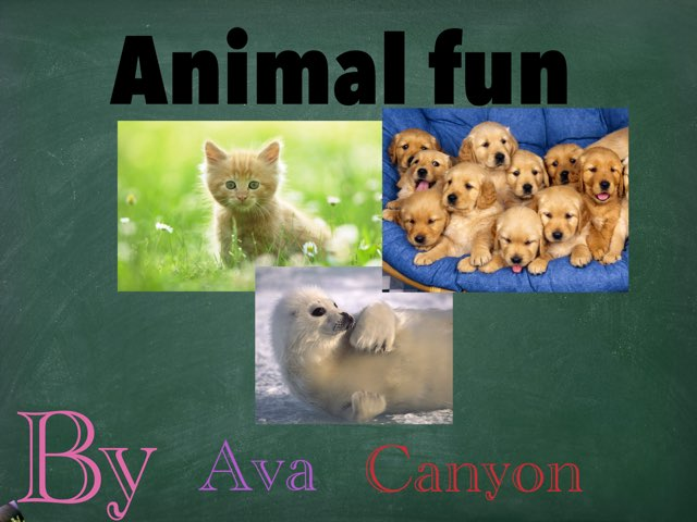 Animal Fun by Jennifer Alexander