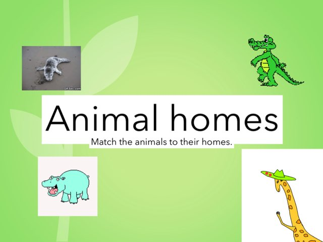 Animal Homes by Julie Gittoes-Henry