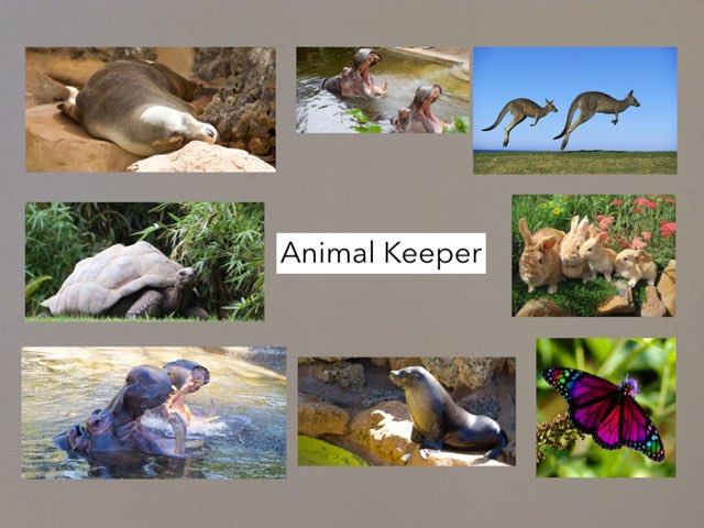 Animal Keeper by Emily Hyde