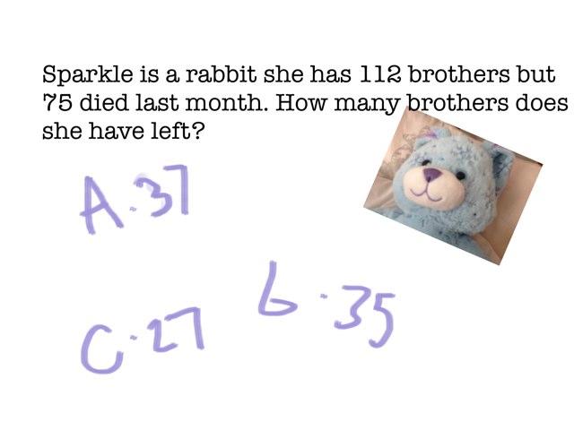 Animal Quiz by Riley Flower