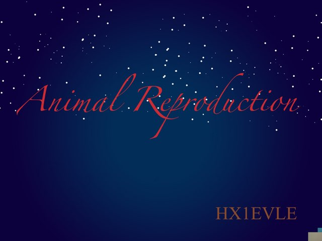 Animal Reproduction by hx1 evle