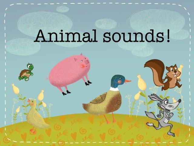 Animal Sounds by Susan Balderas