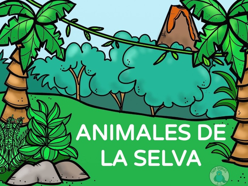 Animales Selva by silvia giampe