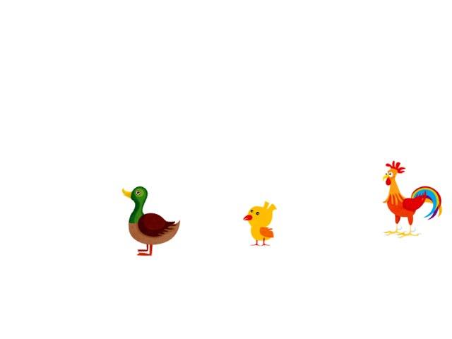 Animals And Shapes by Carolina Pagani