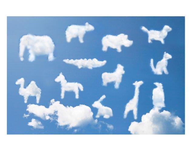 Animals Cloud by Sarah aldousari