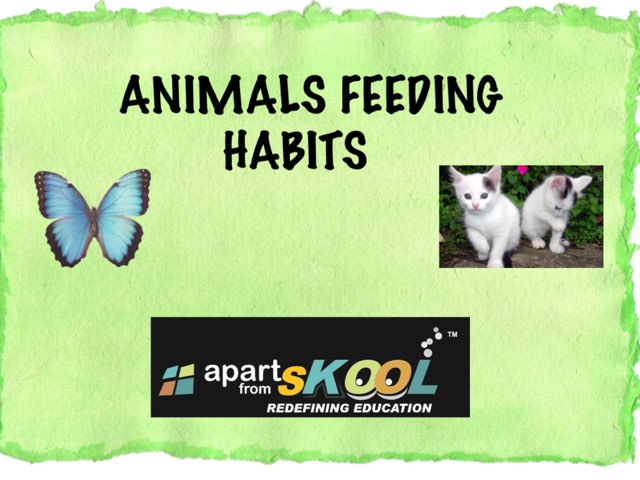 Animals Feeding Habits by TinyTap creator