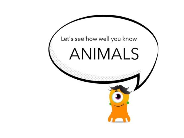 Animals, Grade 2 by Shana Opdenberg