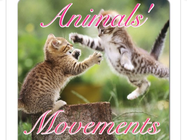 Animals' Movement by May Perdomo
