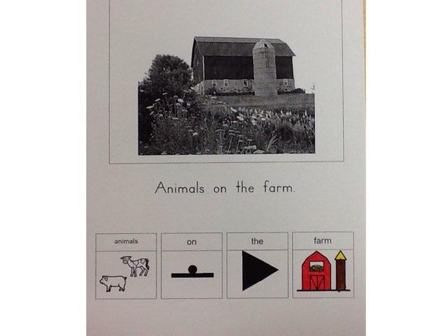 Animals On The Farm by Lindsay Hall