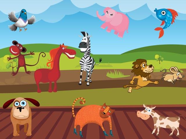 Animals by Malin bennet