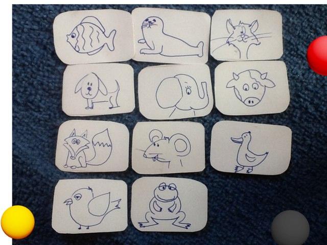 Animals by Barbi Bujtas