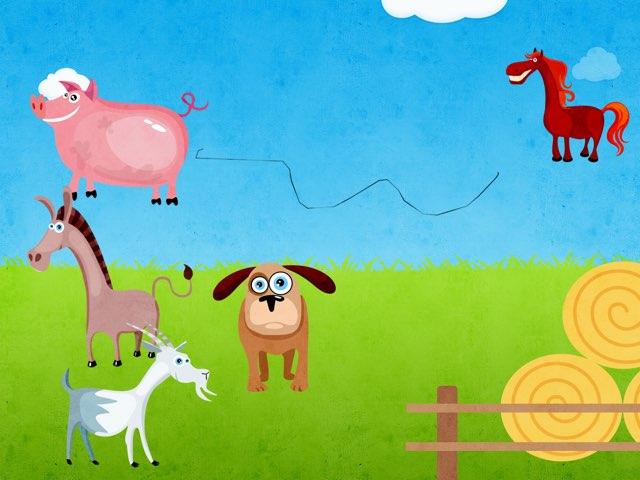 Animals by Karin wolff