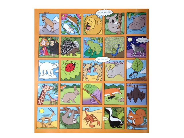 Animals by David Andrews
