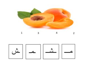 Arabic KG2 11/04/2021 (1) by Vantage KG