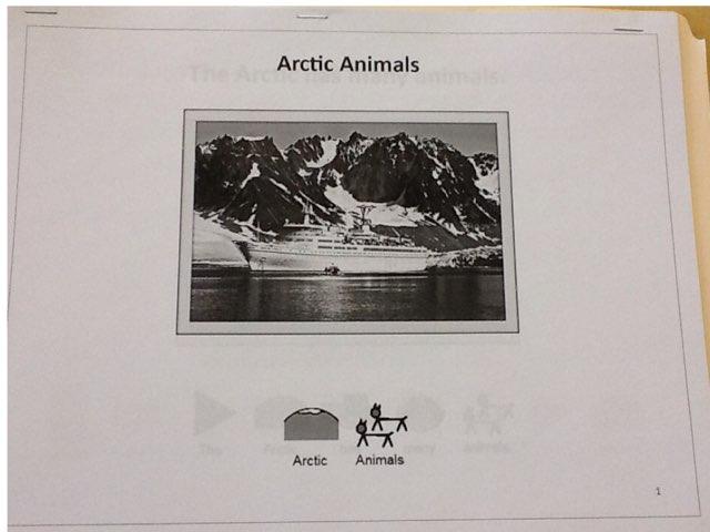 Arctic Animals by Sarah Severance