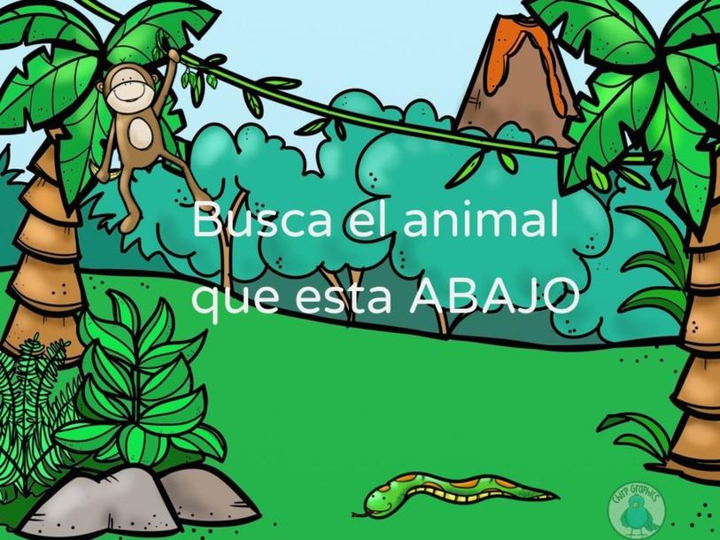 Arriba y Abajo by Lina Katerine Saavedra Diaz