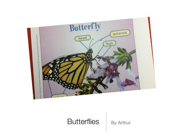 Arthur's Butterflies by P302 SAS