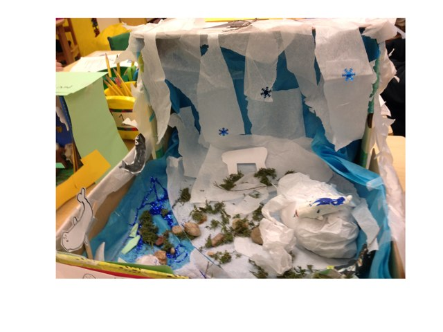 Artic Tundra 511 by 2nd Grade