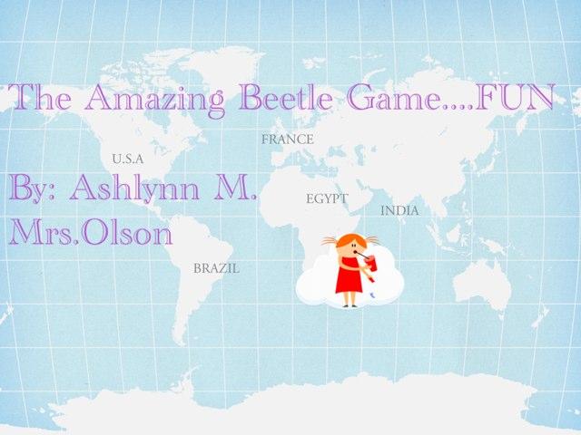 Ashlynn's Beetle Project  by Stephanie Olson