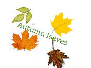 Autumn  by Sharon Stark