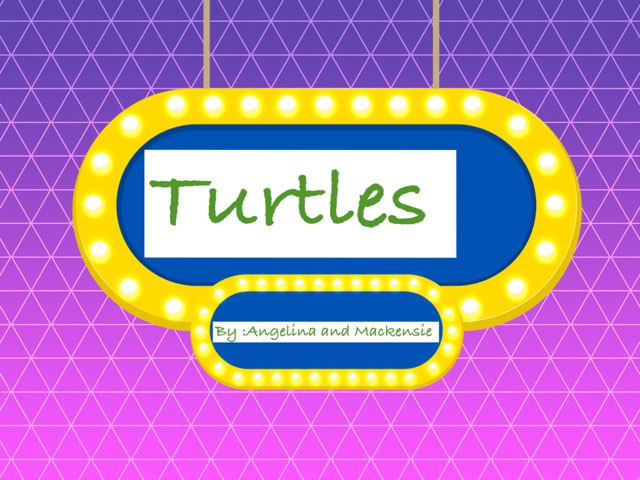 Awesome Turtles by Jane Miller _ Staff - FuquayVarinaE