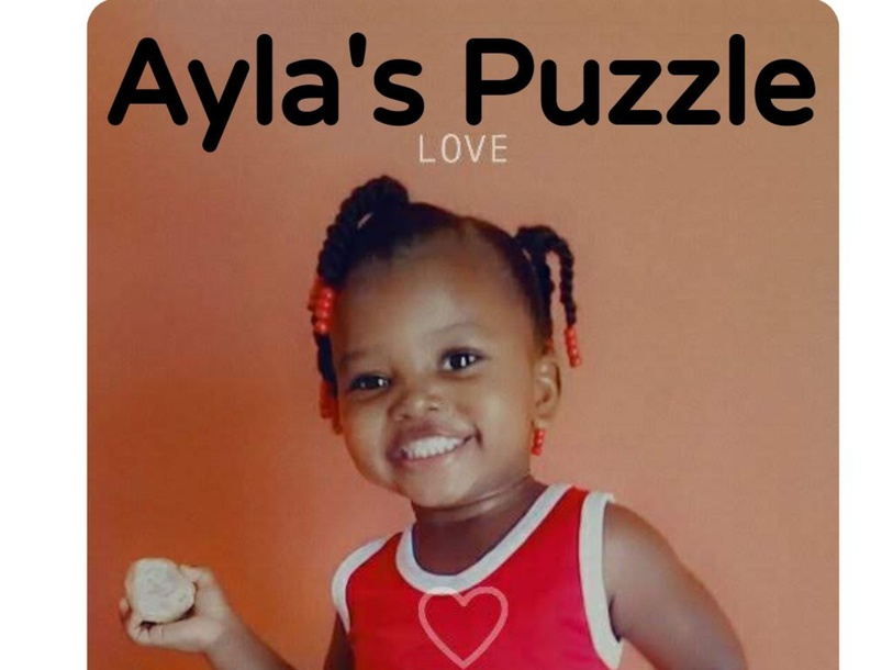 Ayla's Puzzle by Anna Kaye
