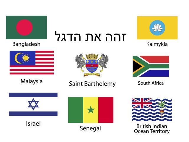 דגלים 2 by Meital Avissar
