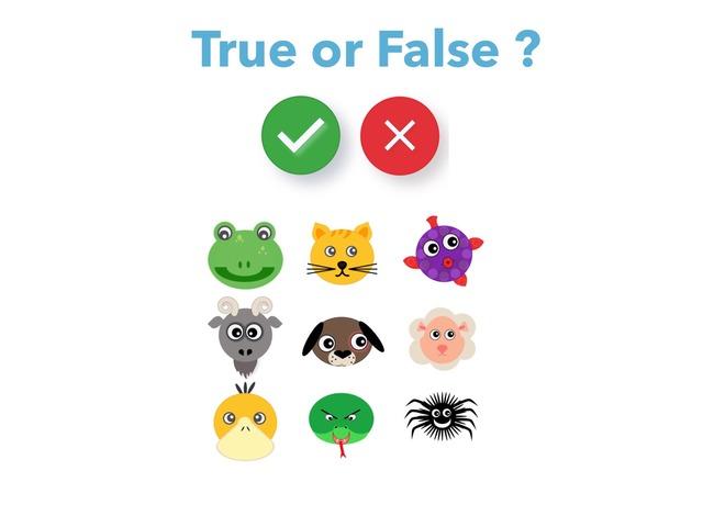 animals & colours - true or false ? by Teeny Tiny TEFL