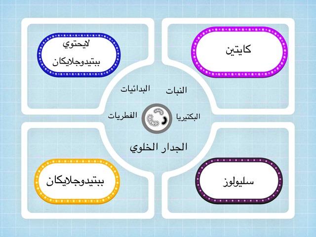 لعبه بكتيريا by Wardah Al-Hammadi