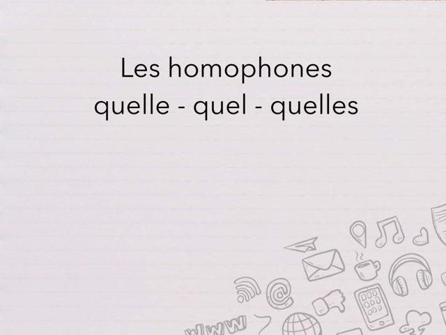 Homophones Quel , Quelle by Cédric Houbrechts