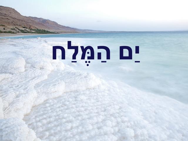ים המלח by ספיר בירנבאום