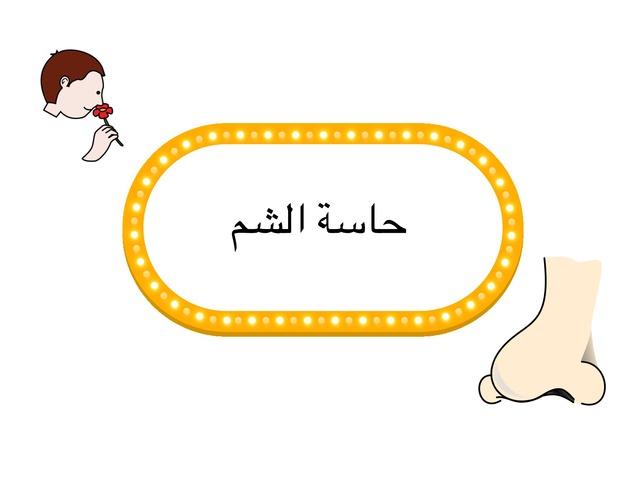 حاسة الشم by Riham Hammad