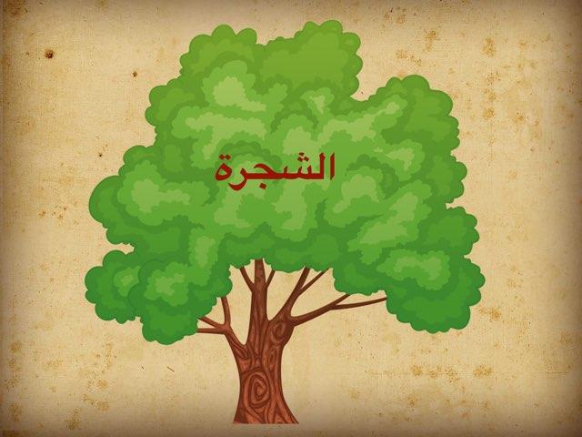 الشجرة by Wadiha Alkhibari