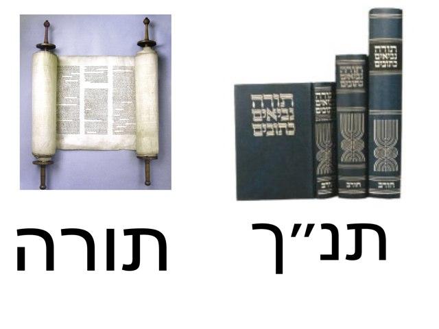 השוואה תנך- תורה by Tzevet Bbm