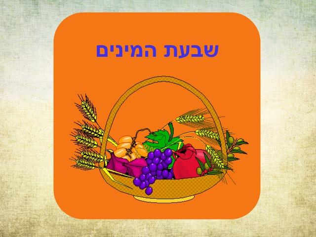 שבעת המינים by נועה יוסף