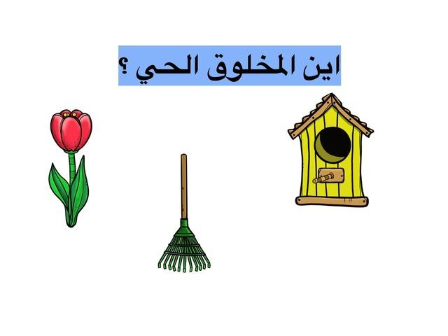 المخلوق الحي by شموخ الروح