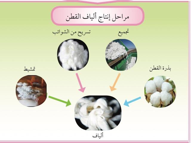 الالياف by المعلمه فاطمه