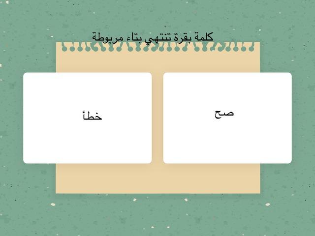 صح أو خطأ by mohamed Swaed