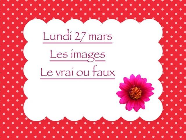 N - Lun27 - Images Et Vrai Faux  by Caroline Gozdek