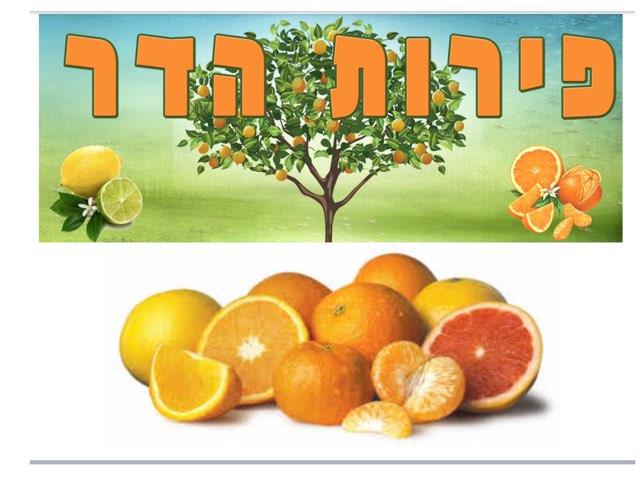פירות הדר by רון טמיר