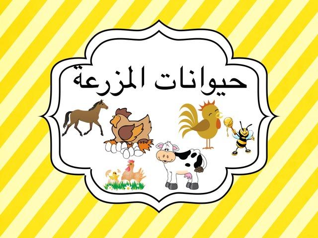 حيوانات المزرعة by Gomaa Abooraya