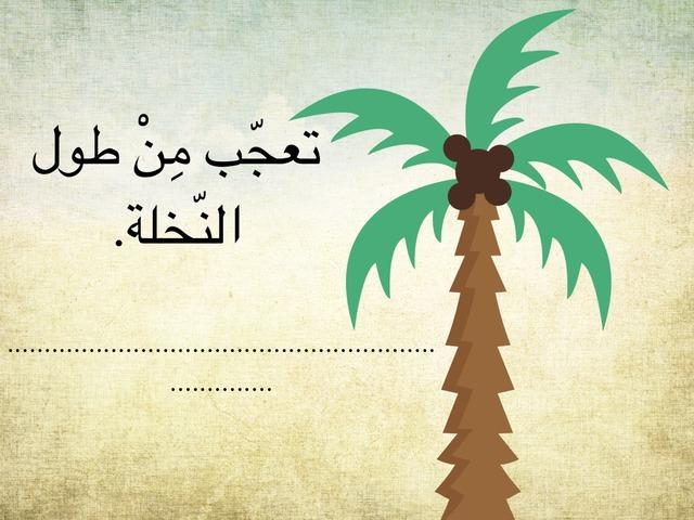التعجب by Abla Mini