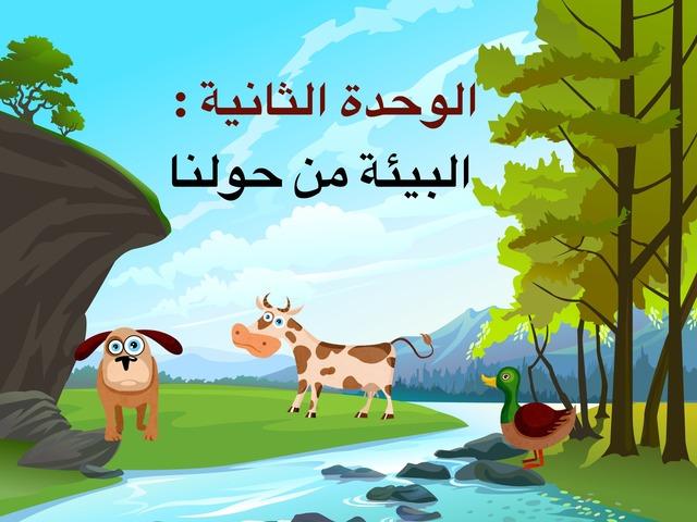 البيئة من حولنا by Salma Alsaeedi