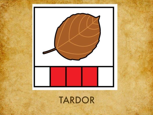 TARDOR GAE1 by Logo Sil