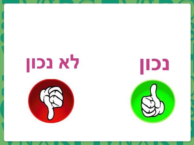 נכון לא נכון by שובל כהן (סז)