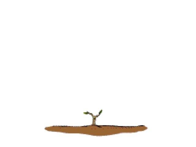 משחק מסלול חנן הגנן by רינת ידגר